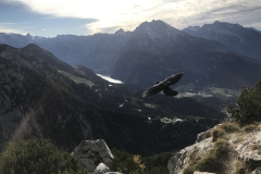 The Eagle's Nest, in Austria